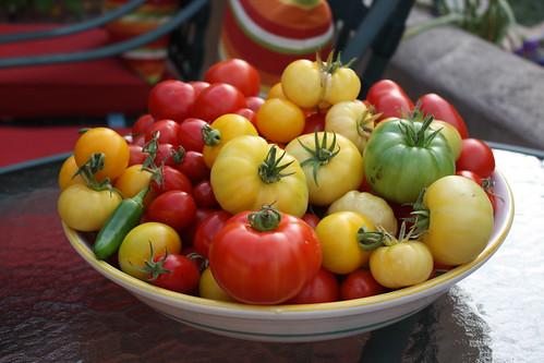 Friend's Tomatoes