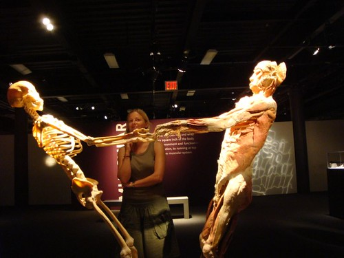 Bodies Exhibition. New York. Very, very cool and interesting.
