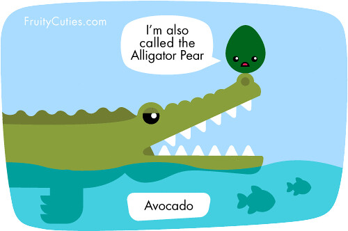 Avocado A.K.A. Alligator Pear | Flickr - Photo Sharing!