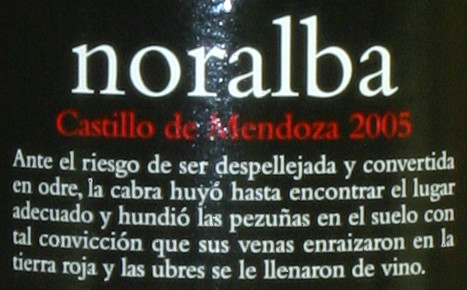 Microrelato - Noralba 2005