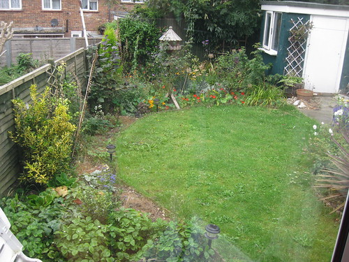 lower lawn view 09/09