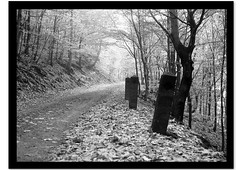 cca 1980 - Patnky v Dub (beranekp) Tags: road street autumn wild mountains nature stone les forest way czech strasse herbst guard 1001nights wald ore heimat weg podzim cesta erzgebirge hory dub randstein krun eichwald goldstaraward krunoho
