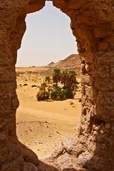 (682) Festung Ain el-Labakha (avalon20_(mac)) Tags: africa travel history sahara nature geotagged sand desert egypt 500 misr eos40d schulzaktivreisen