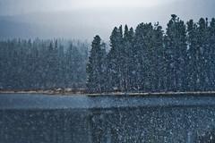 first snowfall (alexdecarvalho) Tags: mountain nature delete10 delete9 landscape delete5 delete2 delete6 delete7 delete8 delete3 delete delete4 save favmtn forcolusite