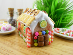 Gingerbread House Pendant (Shay Aaron) Tags: christmas xmas food house tree scale dessert miniature necklace candy crystal handmade aaron fake mini jewelry charm biscuit ornament sprinkles tiny faux shay icing citrus candycane 12th 112 pretzel cuts pendant frosting marmalade petit twelfth hanselandgretel  chocolatechipscookie    christmasspirit           brothergrimm      shayaaron wearablefood