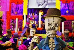 Don Calavera (Srch) Tags: colorful altar calaveras flickrtour dademuertos nikond60 bcflickr