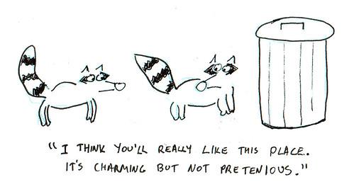 366 Cartoons - 276 - Raccoons