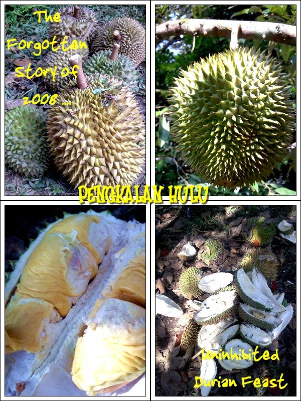 2008 Durian Feast