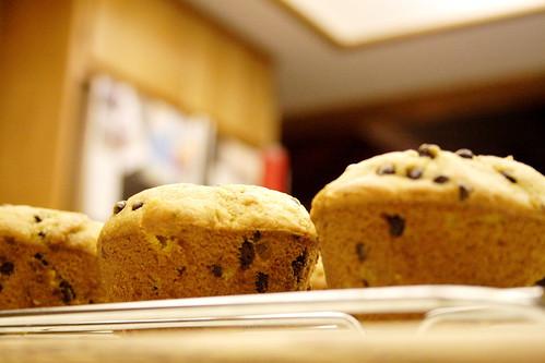 pumpkin.muffins.005