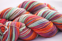Obed on on Spirit Orgainc Merino Worsted 4 oz. (...a time to dye)