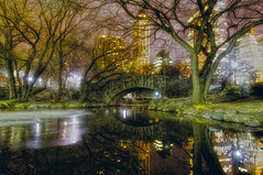 down the rabbit hole (mudpig) Tags: nyc newyorkcity longexposure bridge newyork reflection tree ice skyline night geotagged cityscape plazahotel sherrynetherland mudpig stevekelley avonbuilding