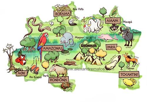 mapa do brasil por regioes. Mapa do Brasil - região norte
