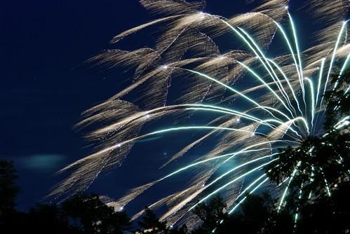 Fireworks2009-1