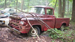 1959 DODGE TRUCK (richie 59) Tags: red usa truck outside junk rust rusty pickuptruck headlights grill rusted dodge trucks newyorkstate headlight junkyard chrysler mopar oldtruck 2009 pickuptrucks rustytruck 2000s hudsonvalley junkyards grills redtruck rustyvehicles 2door clunkers dodgetruck motorvehicles junktruck oldtrucks ulstercounty rustyoldtruck twodoor oldpickuptruck mopars americantruck dodgepickuptruck abandonedtruck dodgetrucks 00s midhudsonvalley olddodge rustyoldtrucks rustytrucks ulstercountyny redtrucks chryslercorporation 1959dodge ustrucks olddodgetruck ustruck oldrustytruck americantrucks junktrucks rustydodge oldpickuptrucks abandonedtrucks 1950struck july2009 olddodgetrucks 1959dodgetruck 1950strucks oldrustytrucks july292009 cotekill americanpickuptruck rustydodgetruck richie59 oldmopars oldmopar rustydodgetrucks