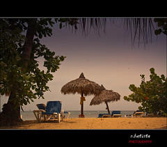 Saman #15 (r.batista) Tags: ocean vacation sun beach nature water landscape spring sand dominicanrepublic explore countries atlanticocean 2009 saman