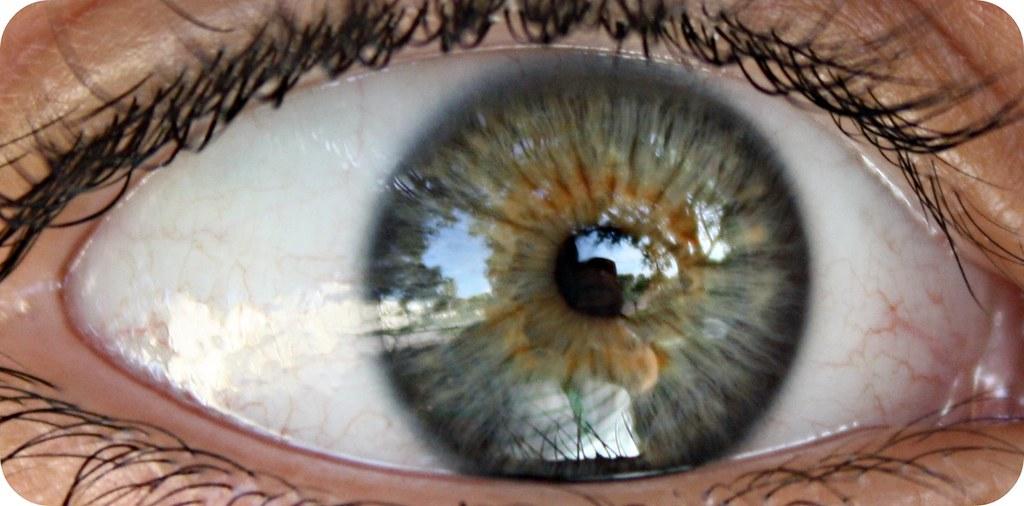 1 eye macro 016
