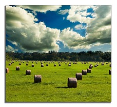 Hay Bales Gone Wild! (nailbender) Tags: fab photoshop farm alabama haybale nailbender werethosecloudsreallythere