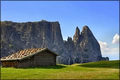 Dolomiti - Malga all'Alpe di Siusi