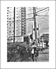 AgatHFCenturia02c (Paulo JS Ferraz) Tags: brazil bw film branco brasil analog pb preto bn sp são josé picnik campos brésil agat centuria processc41 cafenolc copyrightpauloferraz pjsf paulojsferraz