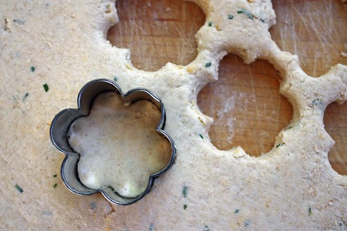 biscuit cutter