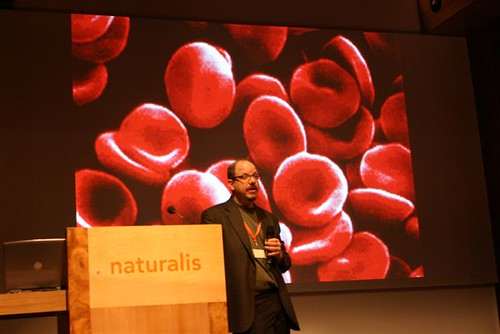 John Hawks with blood cells