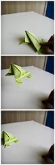 Jumping Jack Frog (zia virgi) Tags: origami op かえる 折り紙 leapingfrog laranachesalta