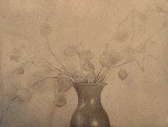 Dust collector (lost in pixels) Tags: analog tea alt vase toned largeformat cyanotype graflex altprocess