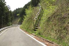 大地峠付近の林道を渡る箇所