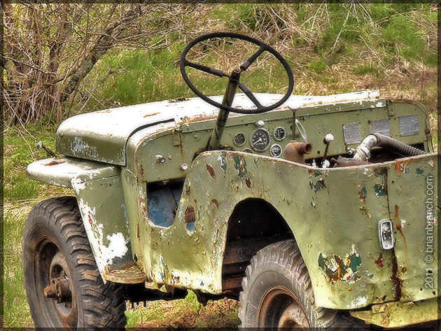 P1150214_willy_jeep