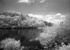 efke ir820 experiment, cherokee lake nc (J. Golden) Tags: efke ir820