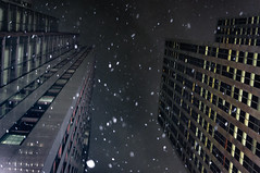 Snowy Gotham nights (Lee Chu) Tags: project365 sel35f18 sonynex6 toronto ontario canada financialdistrict snow winter cityscape skyscraper downtown