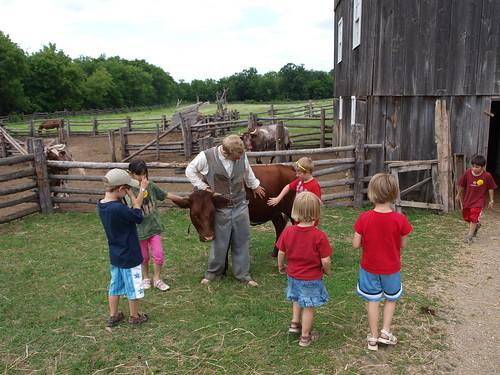 Kelley farm kids petting cow