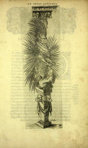 010-Puerco espin-Joseph Boillot 1592