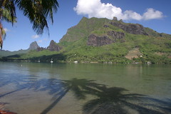Moorea, French Polynesia, 2008.