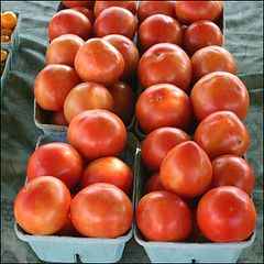 Tomatoes by La Grande Farmers