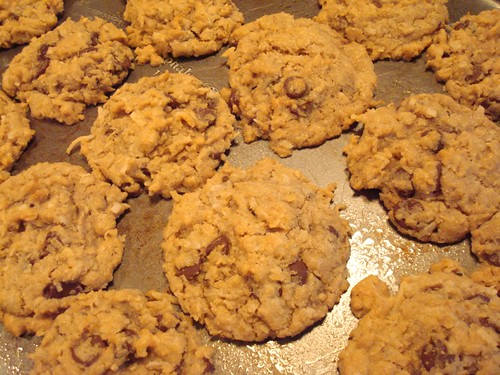 Oatmeal Chocolate Chip Cookies--After