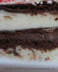 ice_cream_cake_08