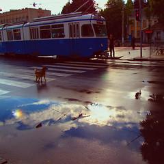 Rainy dreams.. (Che-burashka) Tags: street o