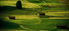green wave (e.v.r.i.e.l) Tags: house nature germany landscape countryside path champs meadow vert adobe fields prairie paysage maison campagne allemagne gree chemin lightroom herbes pture paturage maisonette adobelightroom nisselwang