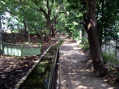 堀川の上流