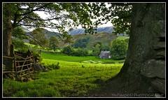 FARMHOUSE, LAKE DISTRICT (IMAGES OF WALES.... (TIMWOOD)) Tags: door blue trees sunset england farmhouse painting farm lakedistrict valley cumbria lowsun pooleybridge farmgate opengate a700 northwestengland brokengate hillsmountains sonyalpha