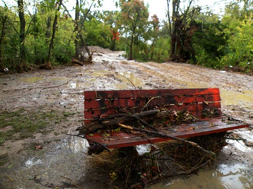 DSCN9709Greathouse Park bench after flood on October 9, 2009
