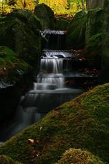 Herbst am silbrigen Bachlauf (seeker0204) Tags: nature water leaves forest waterfall wasser wasserfall laub herbst natur bach fels wald bltter stein moos langzeitbelichtung laubwald fliessen bachlauf waldbach