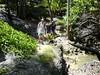 Hike Barbados - garden-of-eden [Dsc00624]