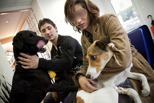 Retrouvailles à la clinique vétérinaire. Dans les bras de Dora, Chipie aurait pu mourir sans intervention médicale.