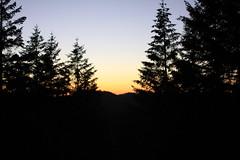 Sunset by the redwoods (eklipz09) Tags: redwoodnationalpark ferncanyon