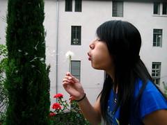 make a wish (aliceysu) Tags: france gardens waiting lyon wind sister blowing victoria dreaming dandelion summertime wishing makeawish flyaway hoping