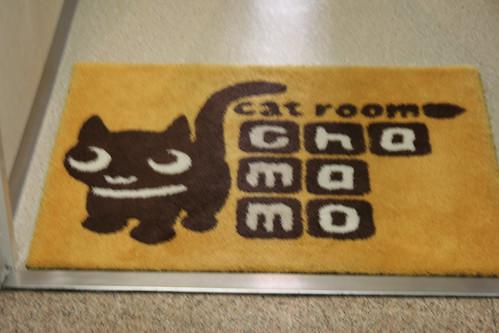 Cat Room Chamamo