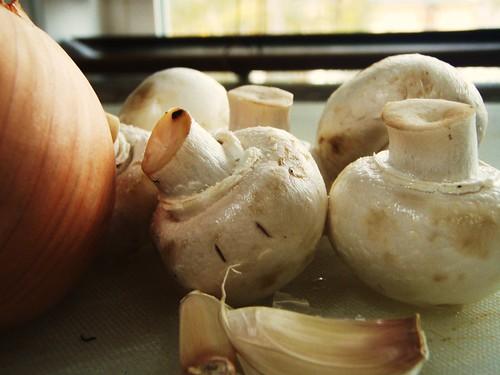 homemade mushroom ravioli - 02