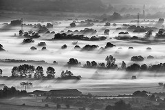 Somerset Levels (David_Baker) Tags: uk greatbritain morning england blackandwhite sun mist tree monochrome field silhouette misty sunrise landscape dawn mono countryside blackwhite scenery glow view empty earlymorning glastonbury dramatic nobody somerset farmland agriculture distance daybreak somersetlevels